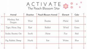 Peach Blossom Star Luck
