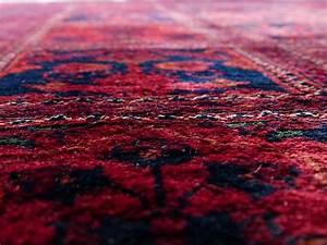 Geruch Aus Alten Möbeln Entfernen : katzenurin seinen geruch aus teppich oder teppichboden entfernen katzenurin ~ Orissabook.com Haus und Dekorationen
