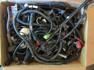 1999 Jeep Wrangler 4 0 Manual Complete Wire Harness