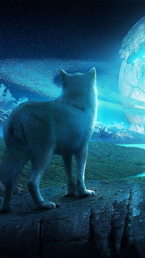 Beautiful Wolf Wallpaper Computer by Wolf Wallpapers Wallpaper Cave