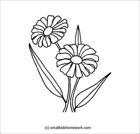 outline pictures of flowers for colouring flowers outline az coloring pages