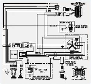 2004 Polaris Predator 90 Wiring Diagram