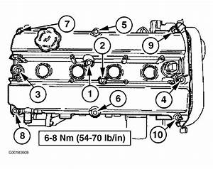 1999 Ford Escort Serpentine Belt Routing And Timing Belt Diagrams