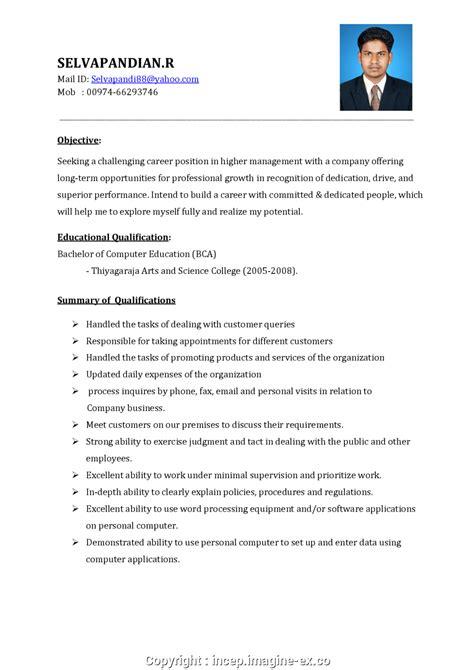 salesman cv sample  sample resume format  sales