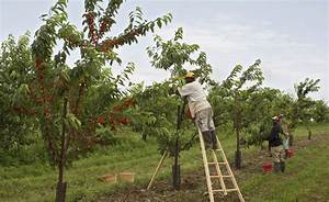 U.S. Farmers Risk Losing Everything Because Of Absurd ...