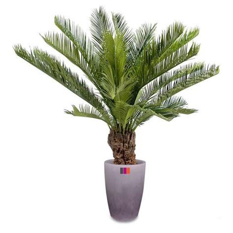 palmier artificiel cycas cm plante tropicale achat