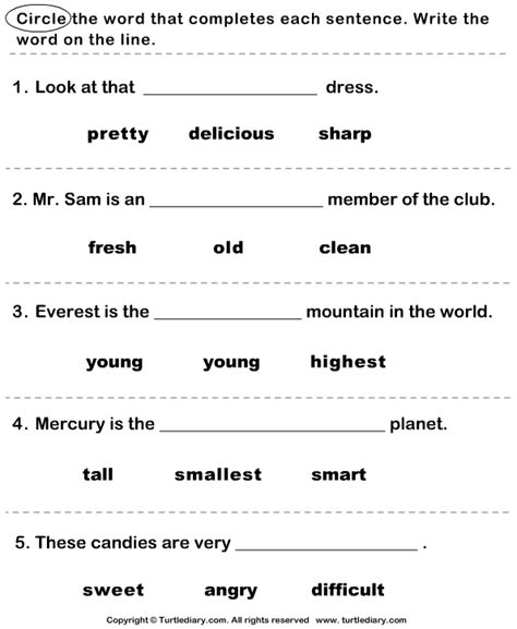 find the correct adjective worksheet 2 turtle diary