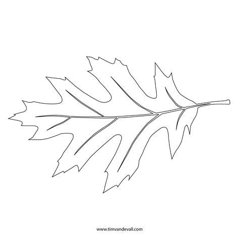 printable leaf stencil outline  silhouette
