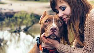 open letter dog leave college