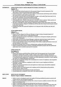 Examples Of Resumes For Customer Service Jobs Operations Vp Resume Samples Velvet Jobs