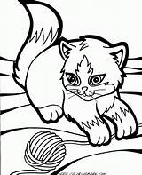 Coloring Kitten Pages Cute sketch template