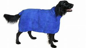 8 Things Every Dog Owner Needs To Get Through The Winter ...