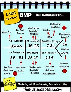 25  Best Ideas About Lab Values On Pinterest