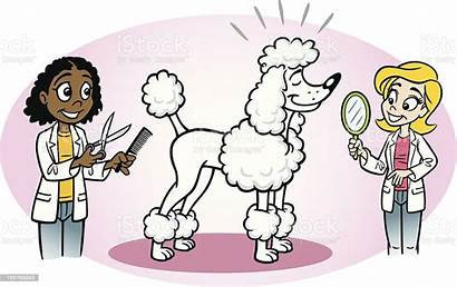 Grooming Dog Clipart Vector Pet Poodle Illustration