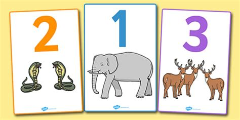 numbers    animals display posters