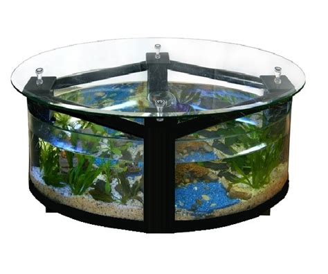aquarium table basse aquariophilie a prix mini
