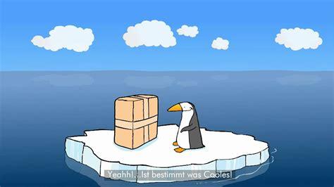 lustige pinguine coole sachen  suedpol youtube
