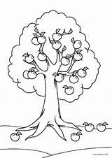 Coloring Tree Pages Apple Printable Fall Preschool Flower Sheets Cool2bkids Leaf Worksheets Visit sketch template