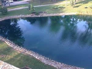 New Here 1  4 Acre Pond Cold Climate