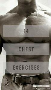 Chest Day   The Complete Pectoralis Workout Guide
