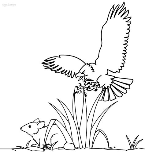 printable bald eagle coloring pages  kids coolbkids