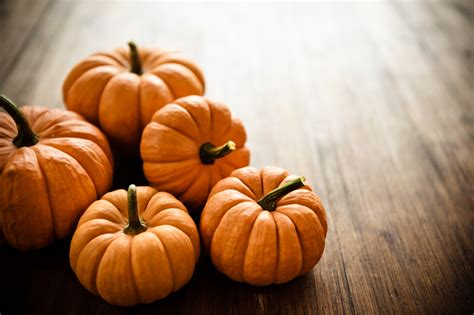 Fall Backgrounds Pumpkins by This Month S Secret Pumpkin Candis