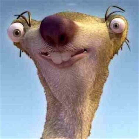 Sid The Sloth (@sidthesloth97) Twitter