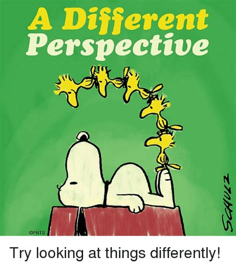 Perspective Meme - a different perspective 1 cpnts try looking at things differently meme on sizzle
