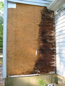 Water Damage Glenview, Water Removal Northbrook, Water. When Should You Buy Long Term Care Insurance. Assisted Living Toledo Ohio How Detox Works. California Solar Company Oak Tree Landscaping. Dish Network In My Area U T Martin Application. Does My Employer Have Workers Compensation. Locksmith Miami Gardens Sp 500 10 Year Return. Private Investigators Nj E Commerce Plattform. Cyber Security White Paper Condo In Whistler