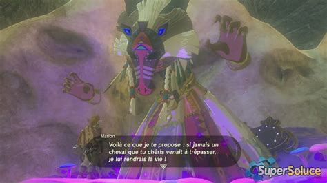 Astuces The Legend Of Zelda  Breath Of The Wild Supersoluce