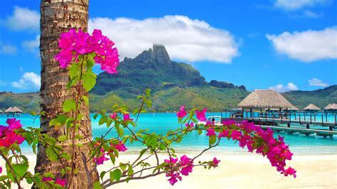 tree  flowers beach sea straw huts mountains