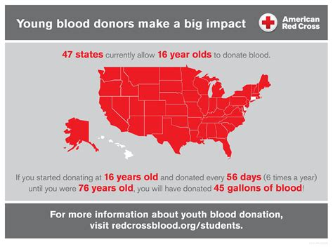 young blood donors   big impact american red cross
