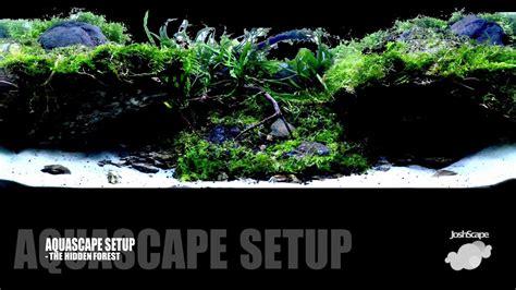Aquascape Setup by Aquascape Setup The Forest