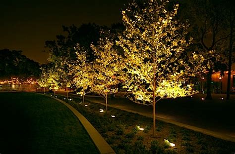 Outdoor Up Lighting For Trees Outdoor up lighting for trees democraciaejustica exterior lighting lam partners architectural lighting workwithnaturefo