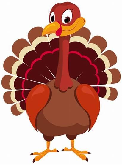 Turkey Clip Clipart Thanksgiving Transparent Yopriceville Previous