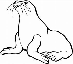 Sea Lion Clipart   Clipart Panda - Free Clipart Images