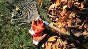 Rasen Düngen Herbst : rasen im herbst d ngen und m hen ~ Watch28wear.com Haus und Dekorationen