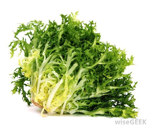 kinds of lettuce greens what are the different types of vegan salads with pictures