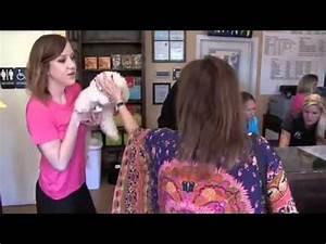 The dog house pet salon houston texas youtube for The dog house pet salon