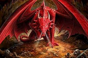fire red dragon - Dragons Wallpaper