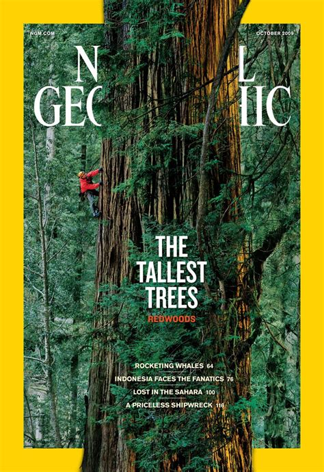 famous national geographic covers twistedsifter