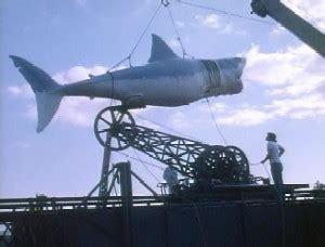 Boat Us Vs Sea Tow Charleston by 열린기자 Gt 열린 기자 Gt 상어지느러미 먹지 맙시다