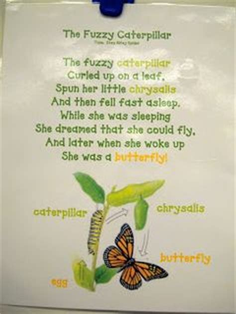 pretty butterfly poem and props butterfly cycle 304 | 09794caacf699f15d3d984611e5569ba preschool poems preschool songs about bugs