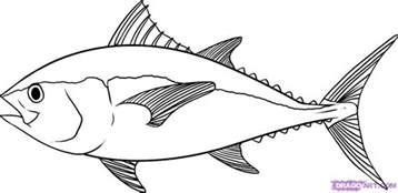 kitchen collections fish drawing best images collections hd for gadget