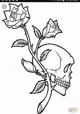 Coloring Skull Rose Printable Tattoo Horse Demon Skulls Cool Designs Skeleton sketch template