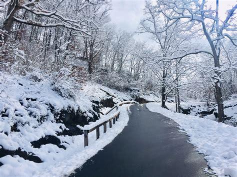 Winter Wonderland First Snow Day In North Carolina  The Salt Compass Blog