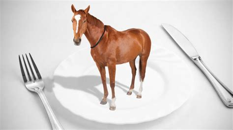 horse meat scandal eating food europe beef eat horsemeat growing explained horses plate adulteration fraud does di gawker canadian equine