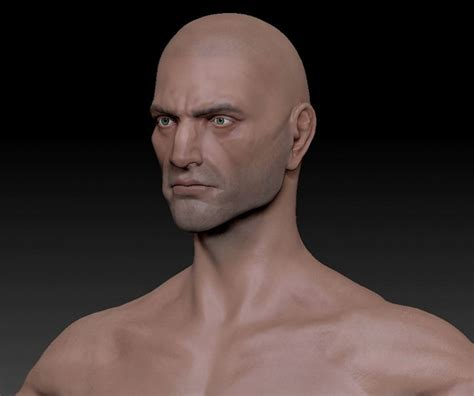Male Adult Human Template (Head) image - The Lays of ...