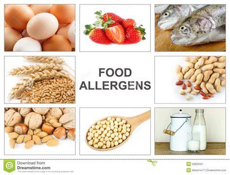 cuisine concept allergy food concept stock photo image 50605351