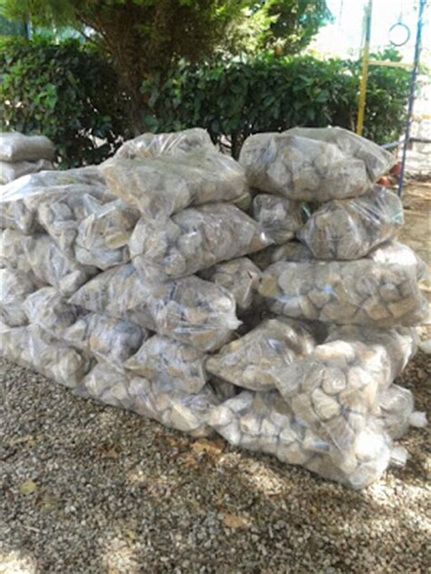 landscaping stone pebbles sa gardenwise
